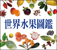 《世界水果圖鑑》